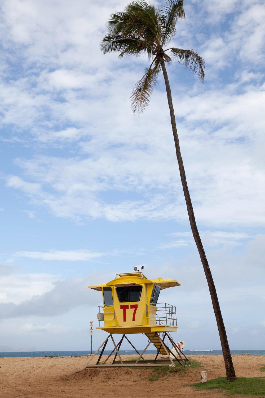 baywatch-Maui-Hawaii.jpg