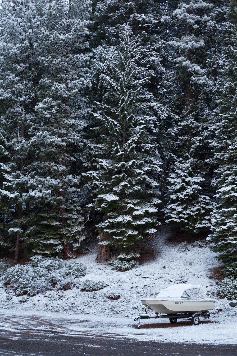 boat-snow-road-pinetrees-Oregon.jpg
