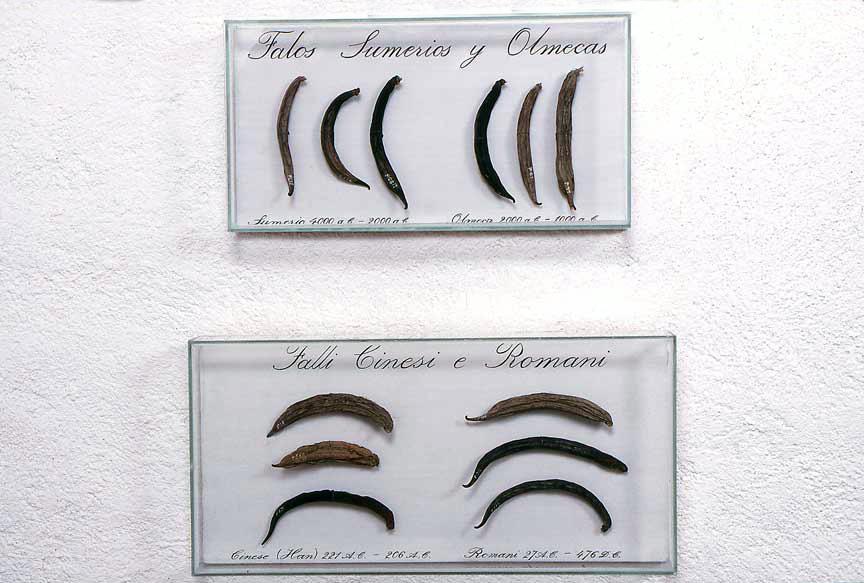El Museo del Estudio Comparativo de Falos Antiguos