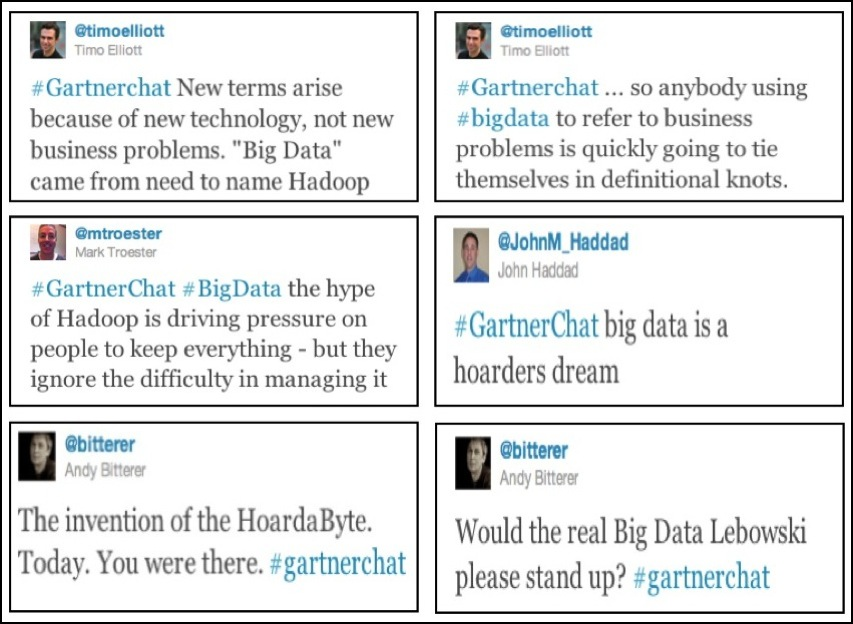 Gartnet Chat on Big Data 2.jpg