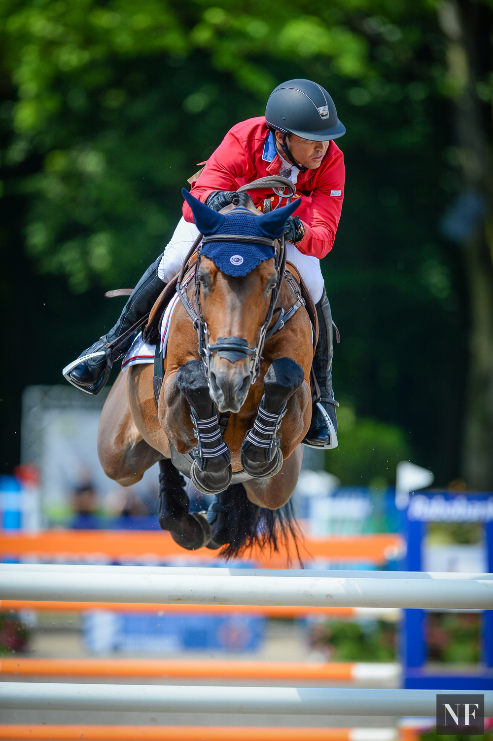 Lucy Davis Equestrian