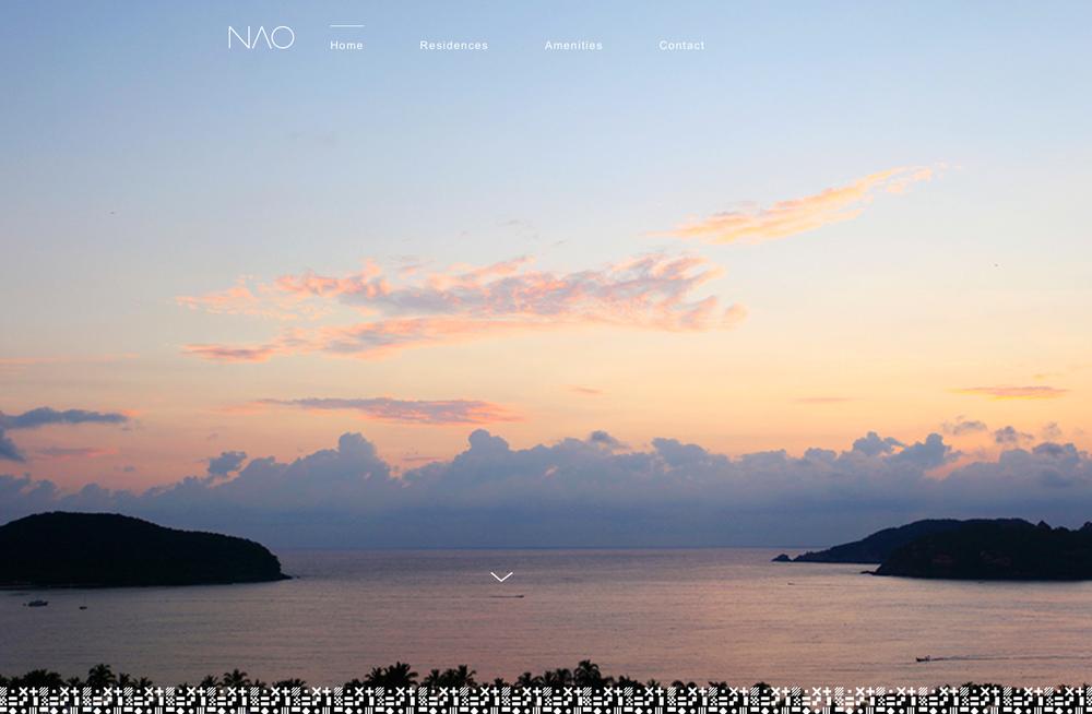 nao-web.jpg