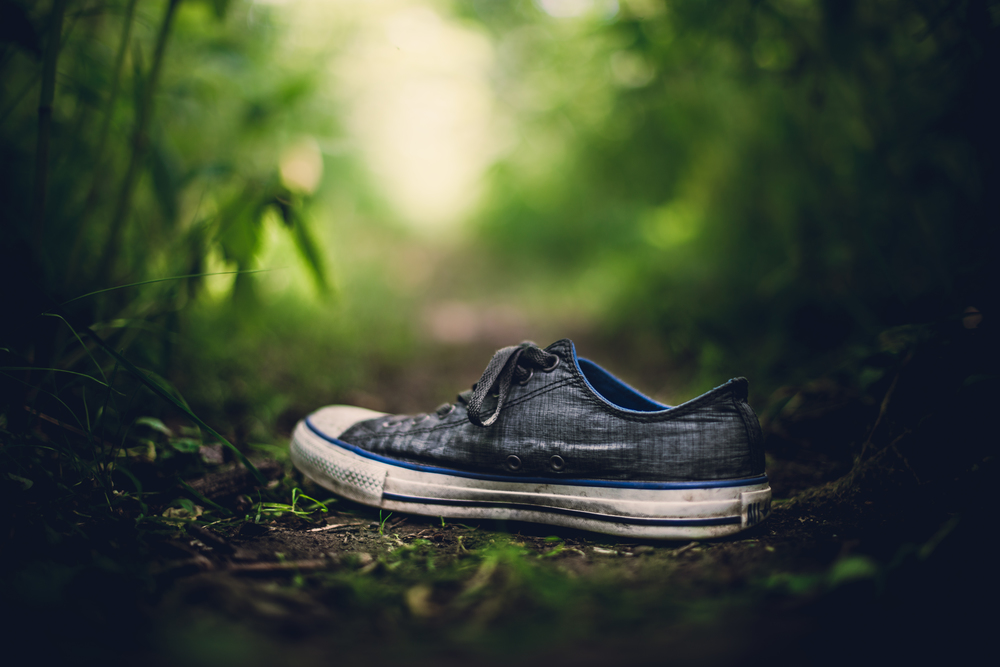 When great ideas seem out of reach, look for the small things that inspire you. This photograph was completely unplanned and came to me while walking through the woods looking for miniature scenes to capture. My shoe came off, and the photo literally fell together.