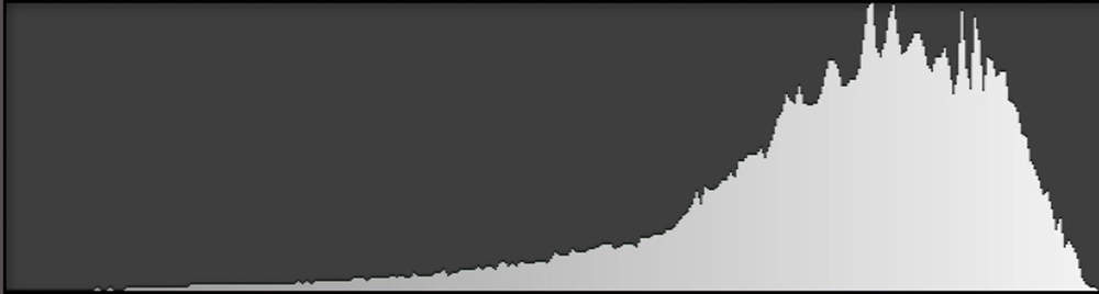 Expose to the right (ETTR): With most of the images pixels in the highlights, you can clearly see the peaks on the graph to the right.