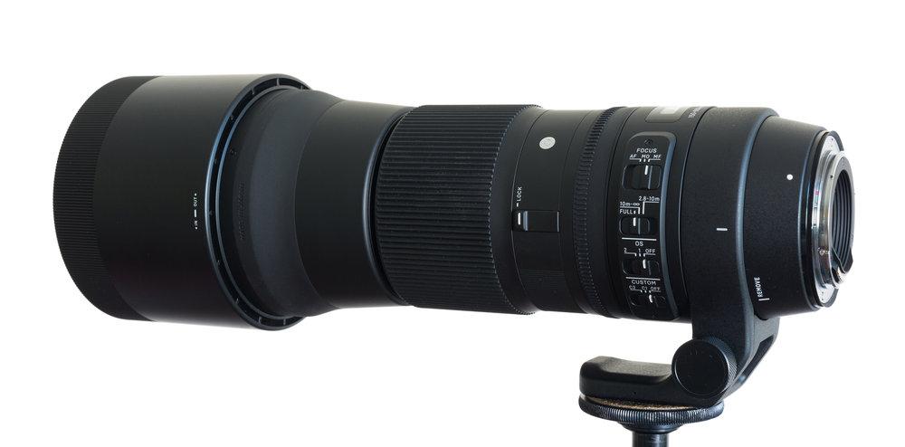 Sigma-150-600-contemporary.jpg
