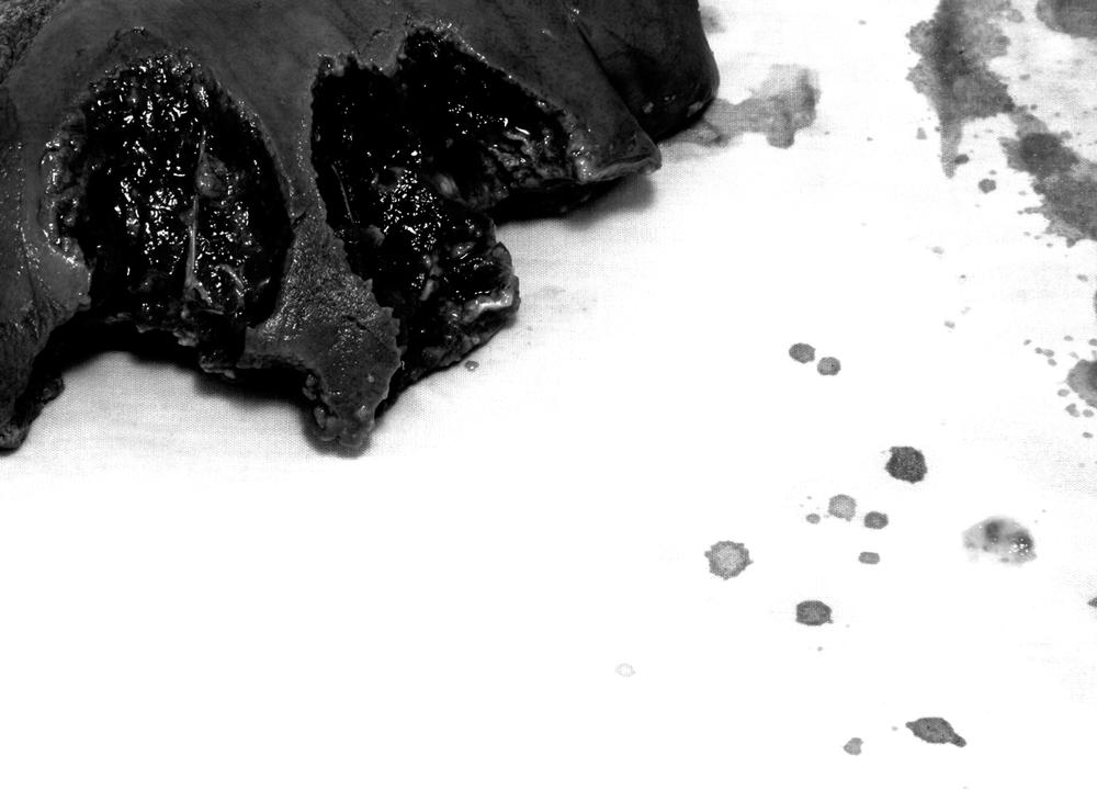 Untitled (bite #2), 2014