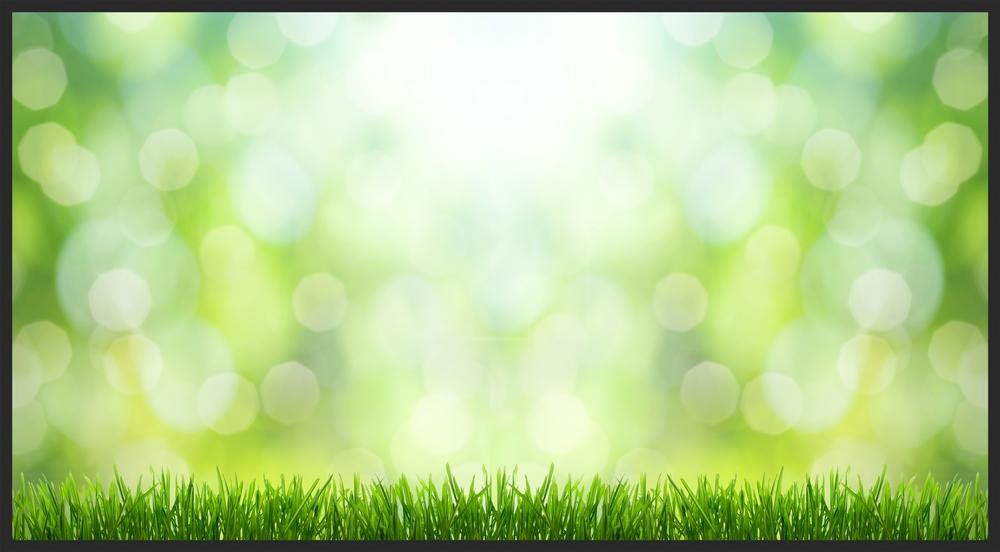 grass:blurr.jpg