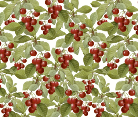 cherries large by whimzwhirled on spoonflower
