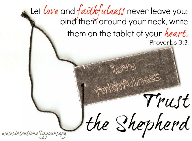 Trust the Shepherd