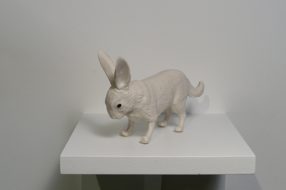 Rabbit Fox, 2015