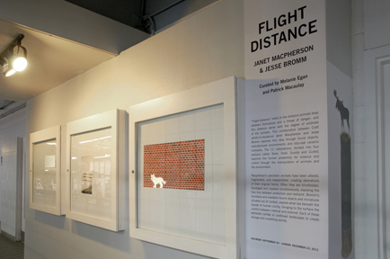Flight Distance, 2010