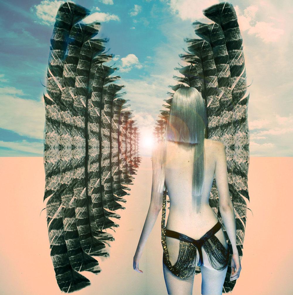 wingsweb.jpg