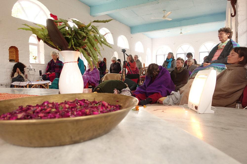 Sangha Flower altar.jpg