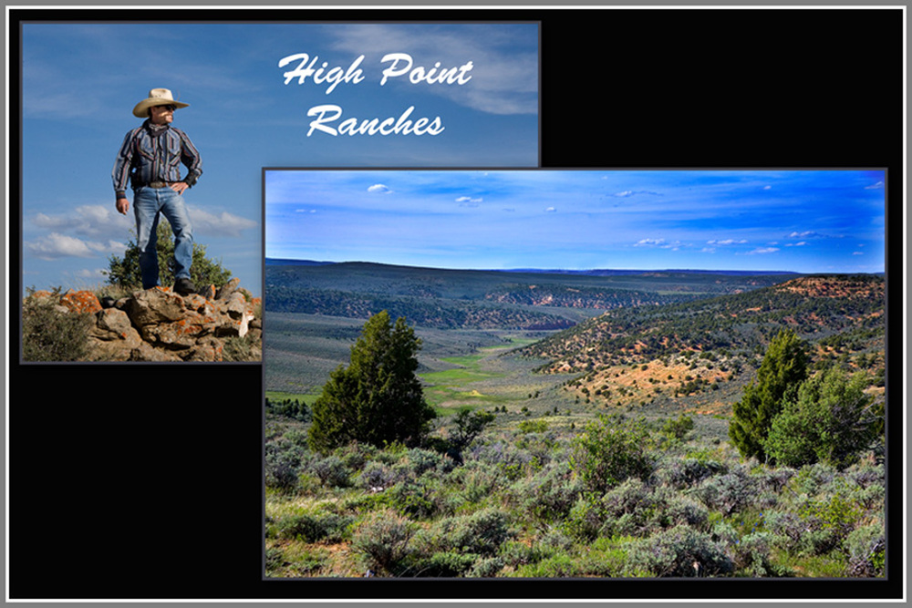High Point Ranches z.jpg
