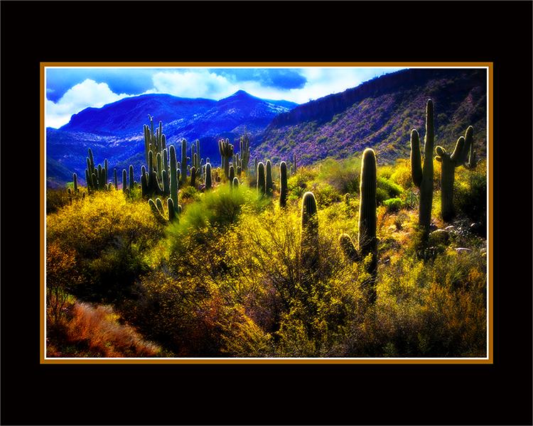 Arizona Skyline.jpg
