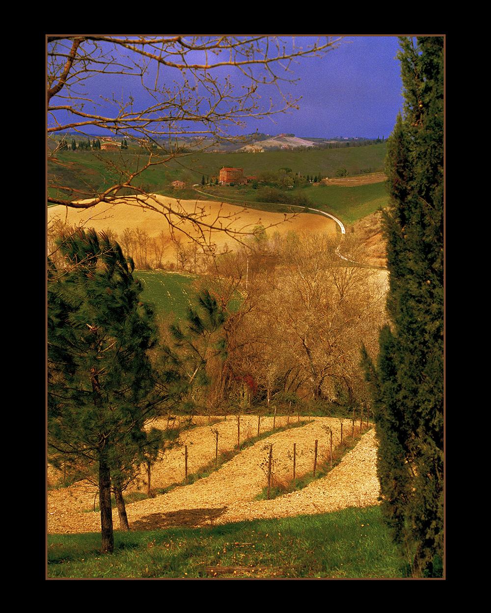 Tuscany Tapestry.jpg
