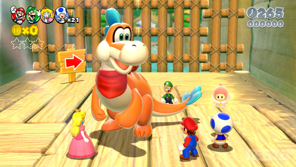 supermario3d-group