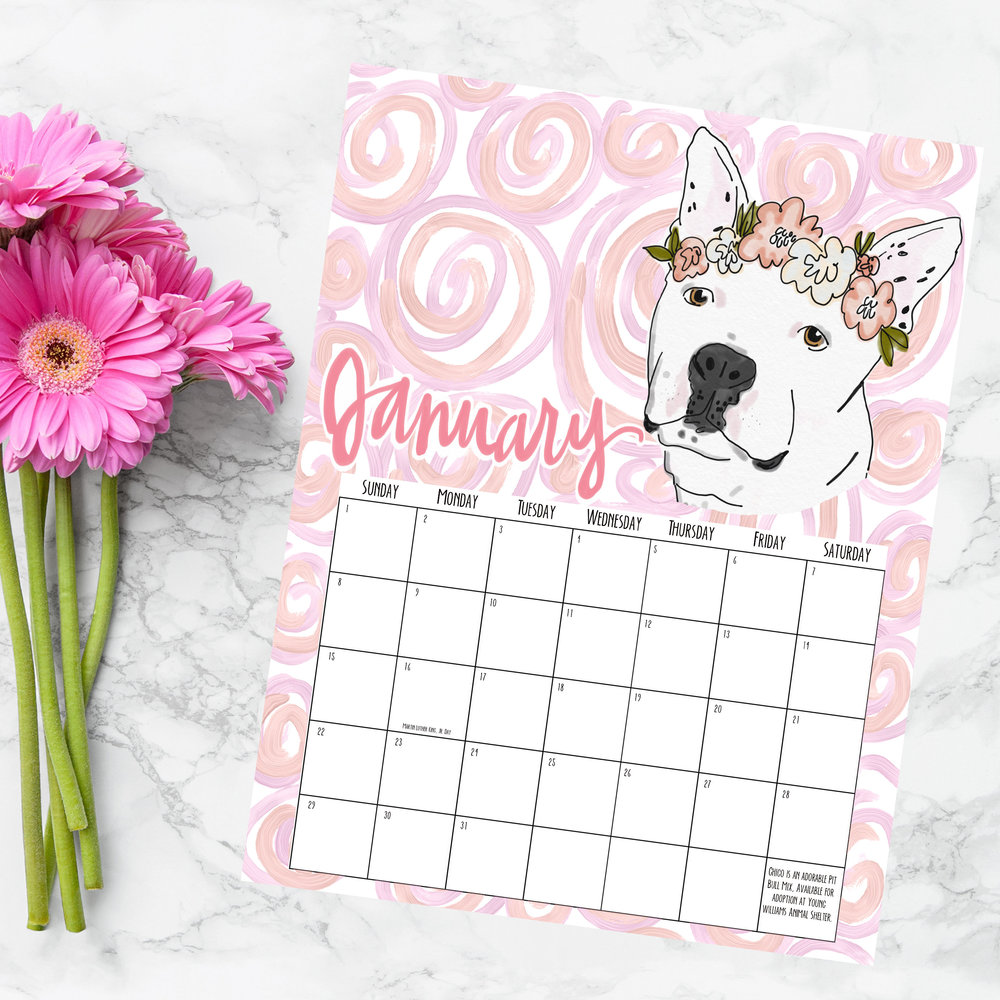 free pit bull downloadable calendar from blush honey paper my