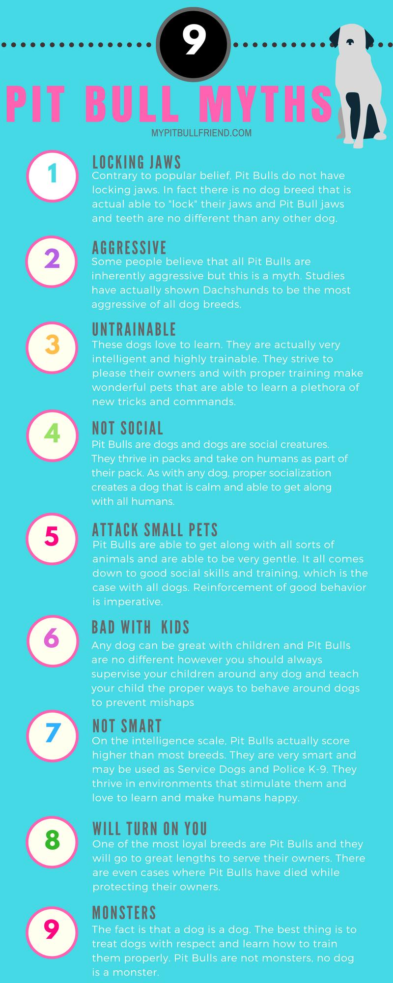 9 Pit Bull Myths My Pit Bull Friend