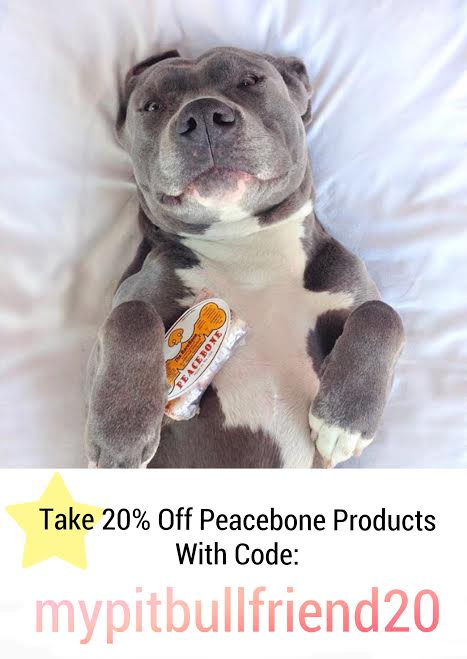 72c732fc29 Must Have Gifts For Pit Bull Lovers — My Pit Bull Friend