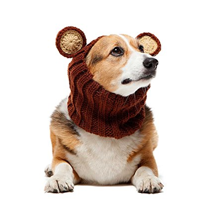 dog snood.jpg