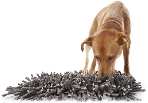 foraging mat.jpg