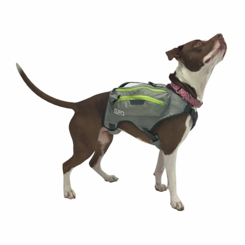 dog backpack.jpg
