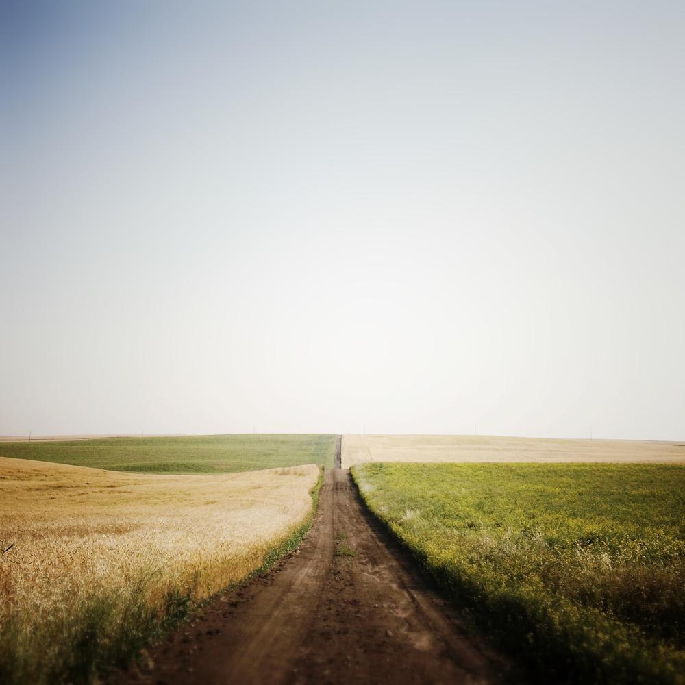Tim Andries' Prairie 3_.jpg
