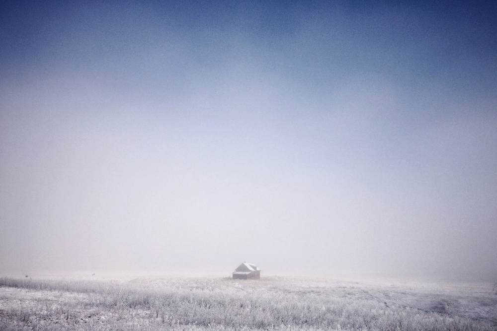 Tim Andries' Prairie 13_.jpg