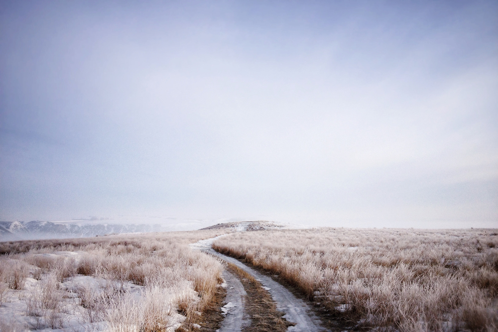 Tim Andries' Prairie 12_.jpg