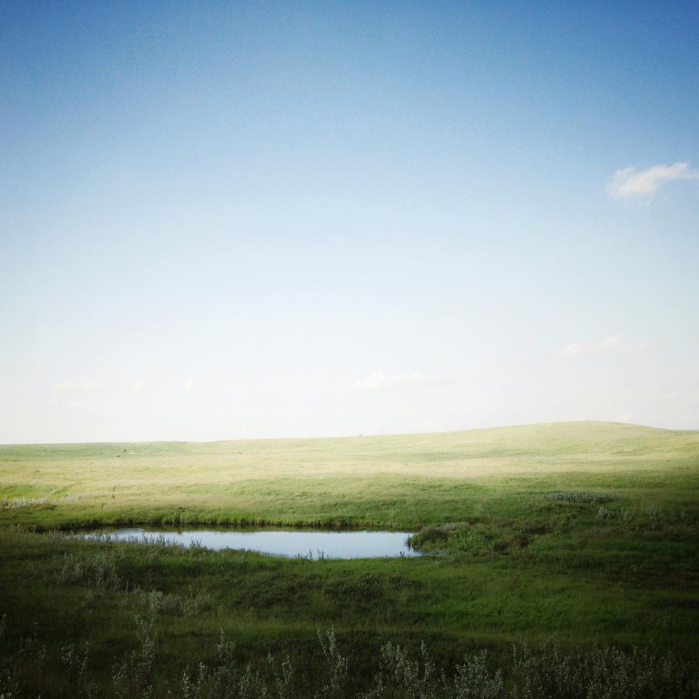 Tim Andries' Prairie 14.jpg