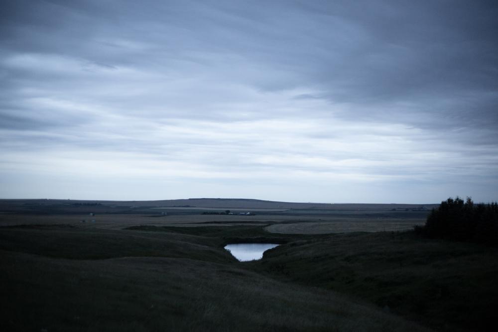 Tim Andries' Prairie 15.jpg
