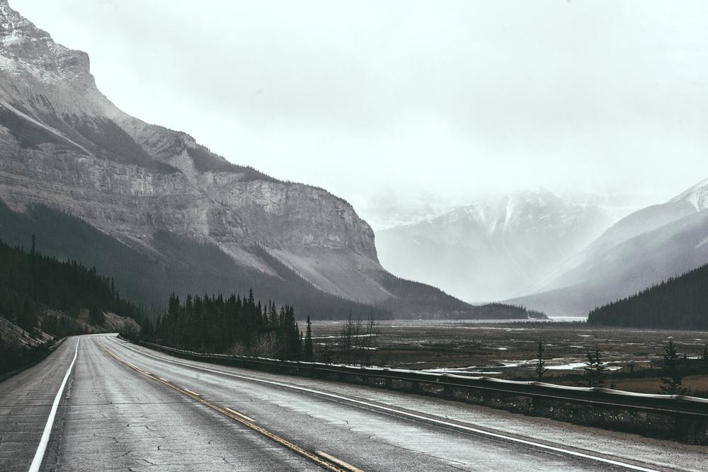 Alberta 2014 v2-2.jpg