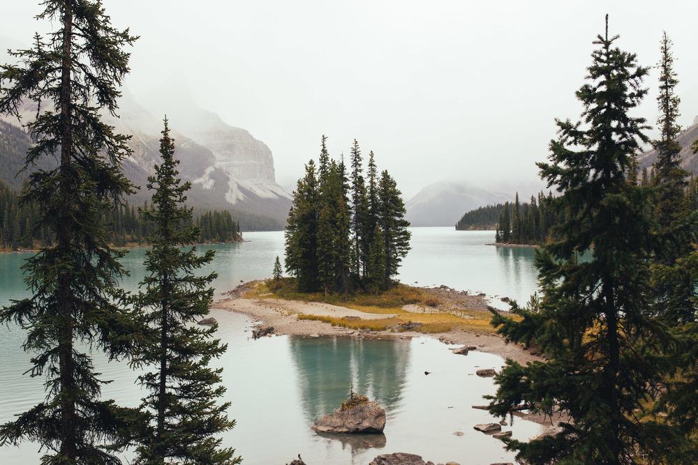 Alberta 1.jpg