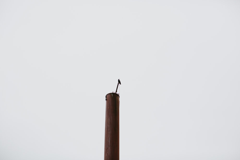 MikeSeehagel-Canada-BritishColumbia-Lifestyle-Photography-77.jpg