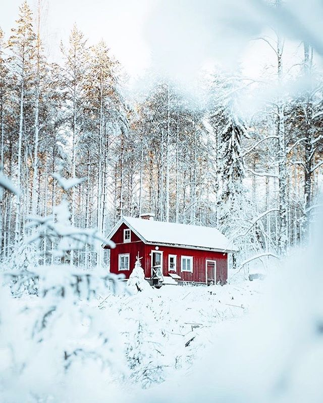 How to spend the winter. // photo by @stolvanen #greatnorthcollective