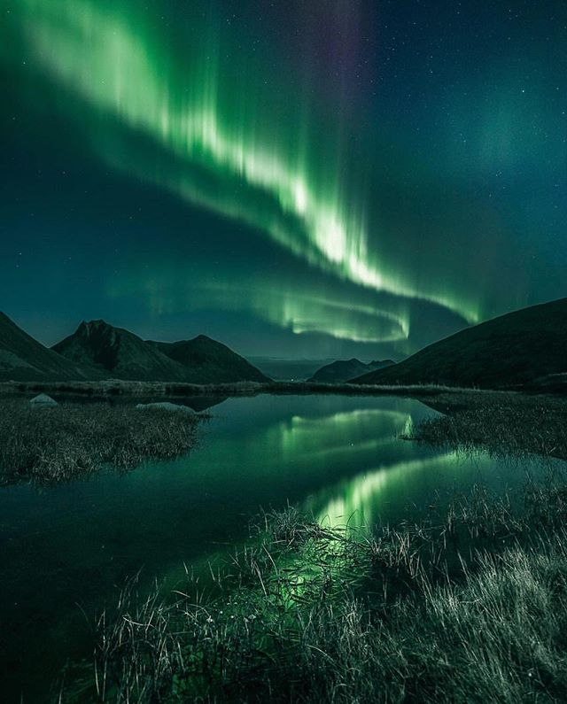Night light. // photo by @eventyr #greatnorthcollective