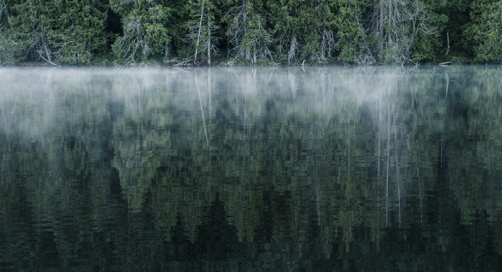 pgore_130623_landscape_0017.jpg