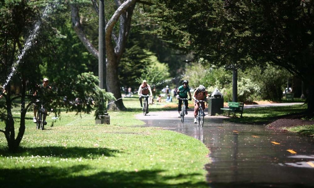 Miles of bike paths