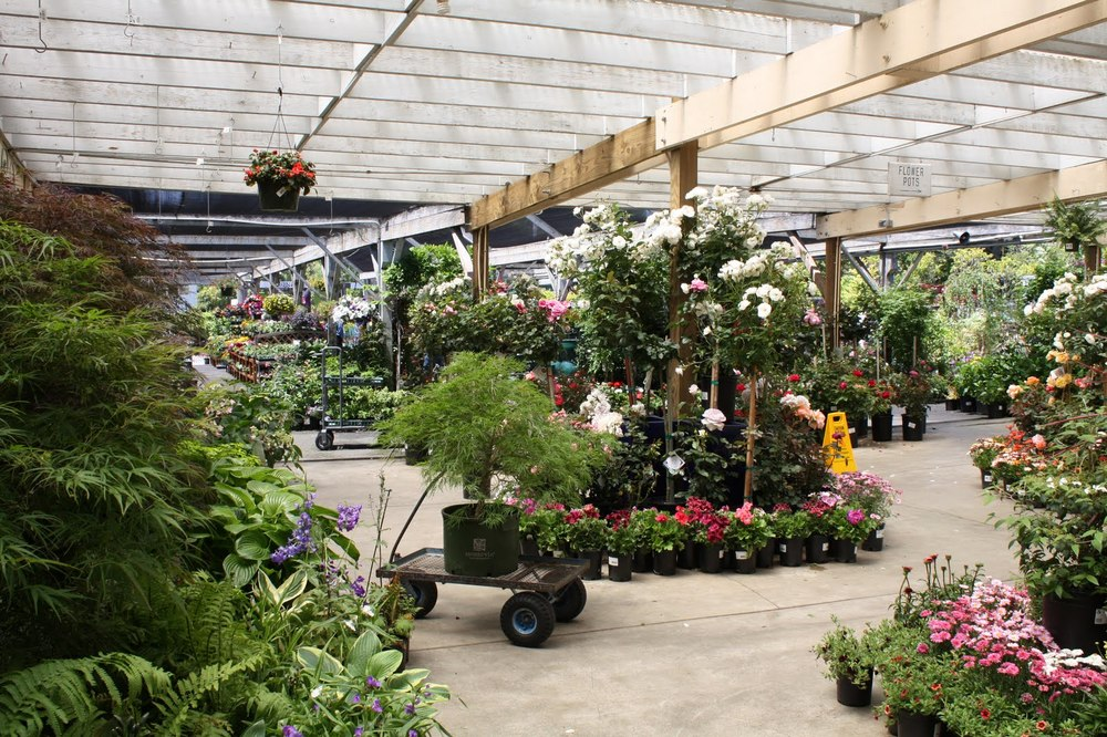 Sloat Garden Center has been offering everything the home gardener could ever need since 1958.