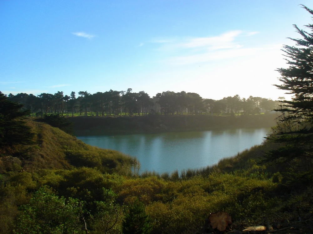 The 4.5-mile paved path around Lake Merced, the city's largest lake, draws joggers, walkers, and dog walkers.