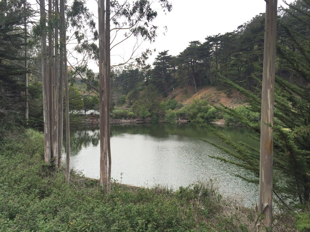 "The area south of Dewey Boulevard is known as Laguna Honda or the Forest Hill Extension. The name Laguna Honda means ""deep lagoon"" in Spanish and refers to the Laguna Honda Reservoir at the intersection of Laguna Honda Boulevard and Clarendon Avenue."