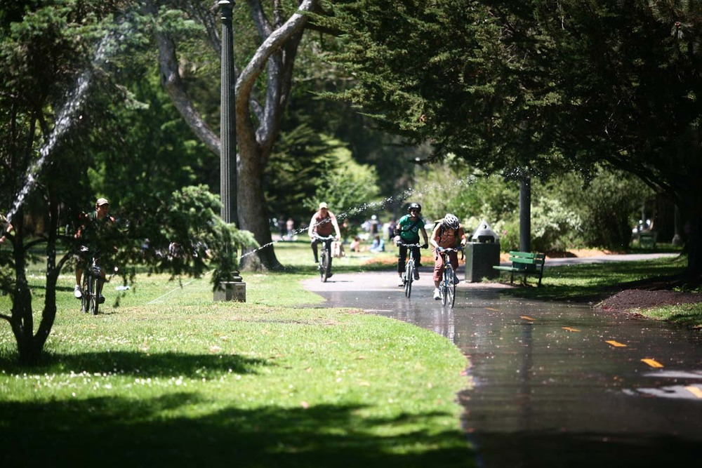 The Panhandle is a narrow, three-quarter-mile-long offshoot of Golden Gate Park that features sports courts, walking trails and a playground.