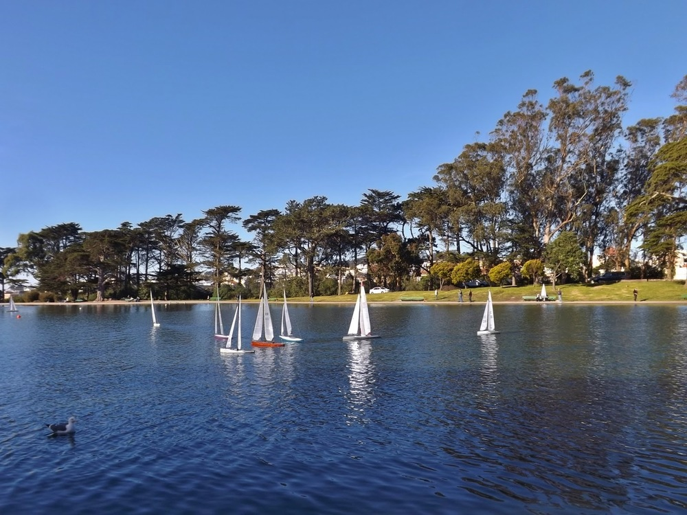 Spreckels Lake in Golden Gate Park was opened in 1898 as a venue for model-boat sailing.
