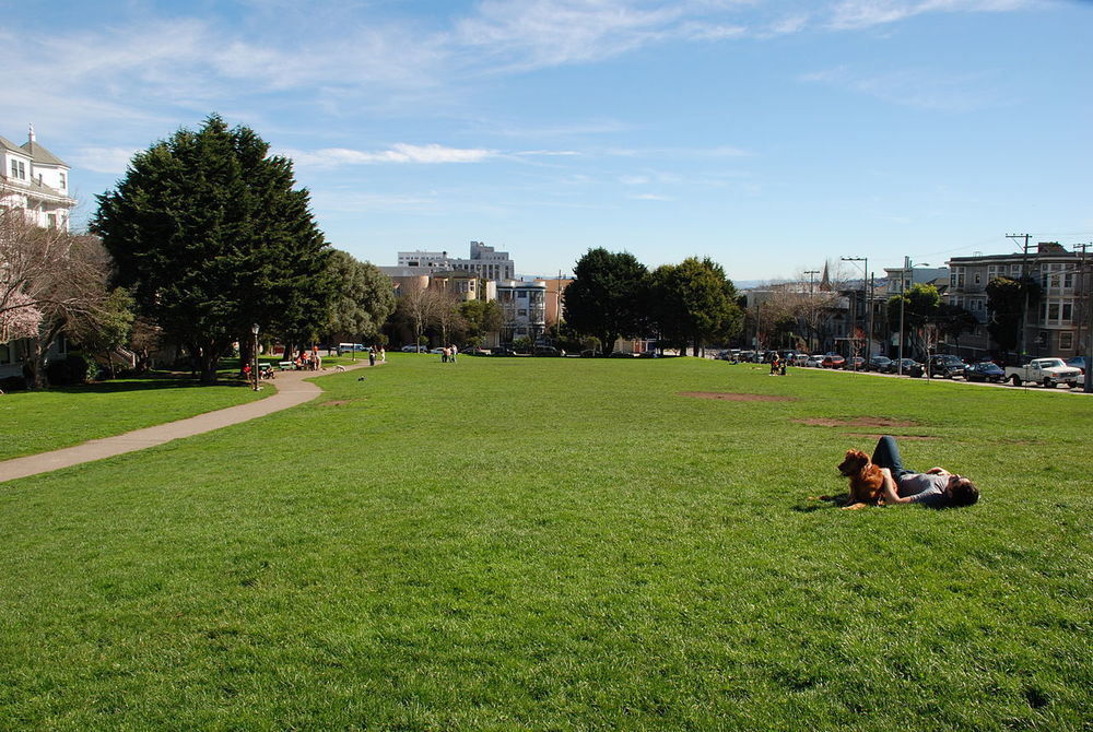 Duboce Park features a children's playground, dog park, basketball courts, and a dog-free public lawn. The park is also San Francisco's official weather observation site.
