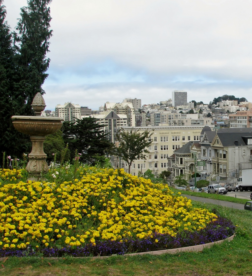 Alamo Square is a pretty hillside park with a playground, walking paths and gorgeous views.