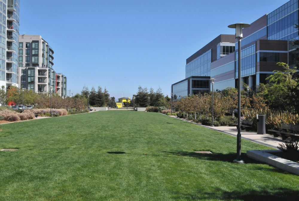 A work in progress, Mission Bay Commons is a pretty stretch of grassy areas—a great place for lunching, lounging and playing.