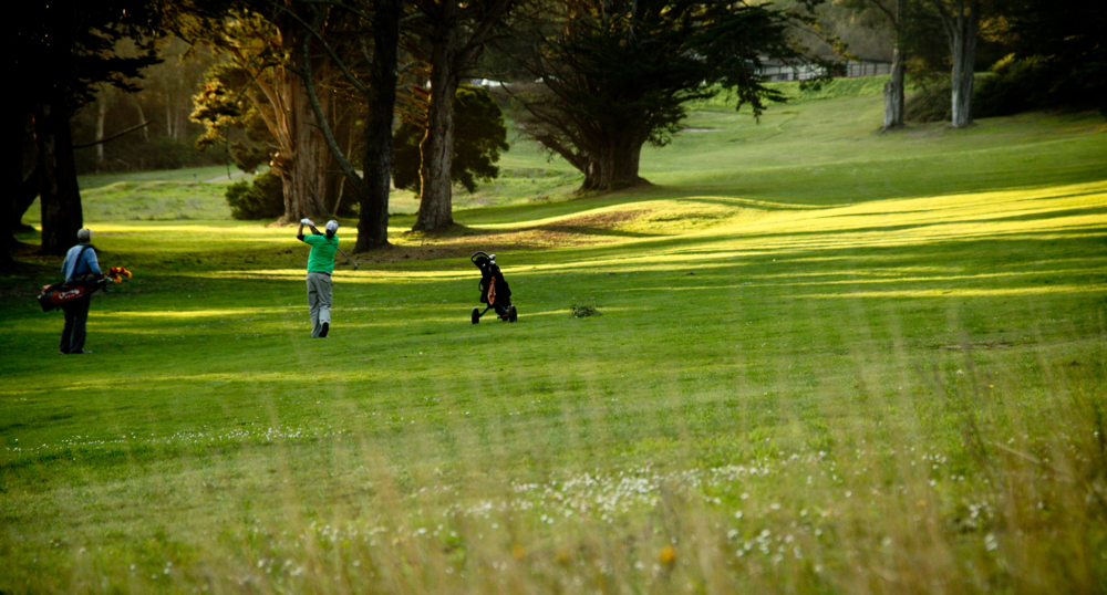 Established in 1962, the Gleneagles Golf Course at McLaren Park is undergoing an elaborate renovation