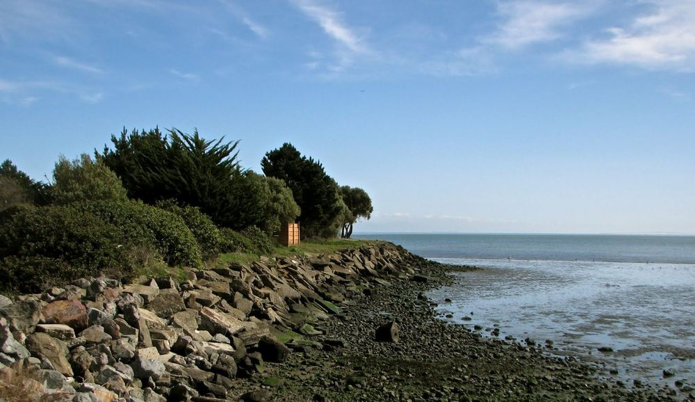 Candlestick Point State Recreation Area is a popular attraction for kayakers and windsurfers.