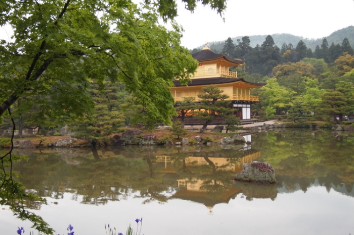 NikitaHederics_Japan_GoldenTemple.jpg